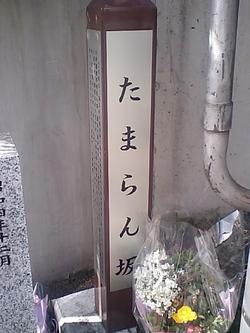 20100312_1425
